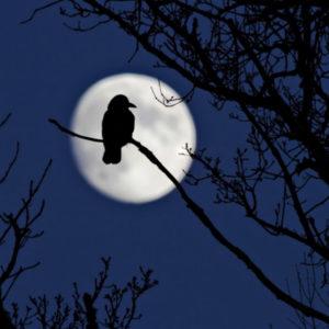 влияние луны на загробную жизнь
