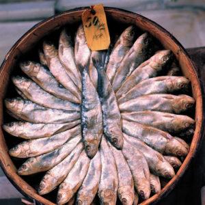 рыба от депрессии
