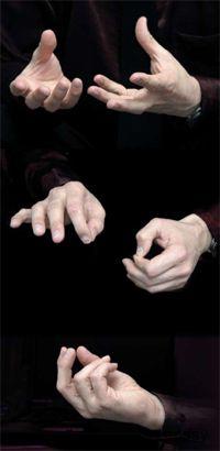 Руки тренера
