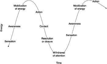 цикл контакта
